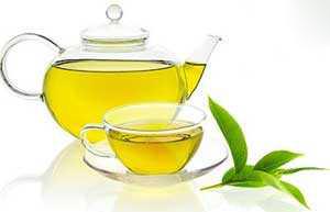درمان کبد چرب .چای سبز