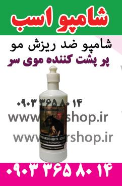 شامپو-اسب-washami